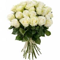 31 крупная роза