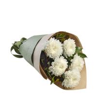 5 одноголовых хризантем