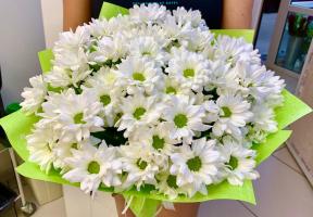 7 кустовых хризантем в упаковке