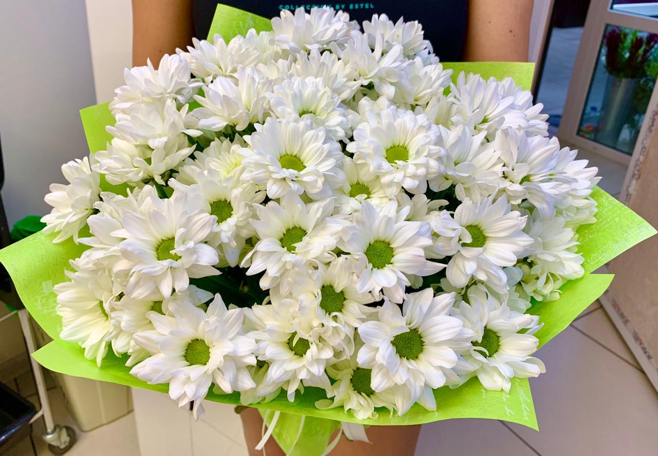 5 кустовых хризантем в упаковке